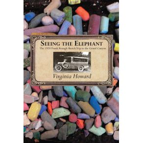 Seeing-the-Elephant