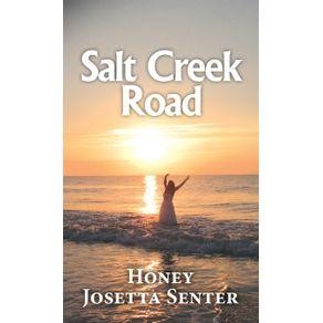 Salt-Creek-Road