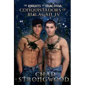 The-Knights-of-Huacovia