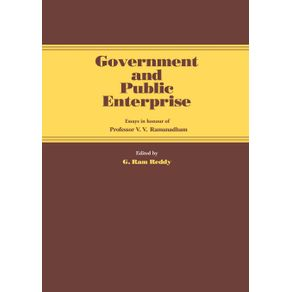 Government-and-Public-Enterprise
