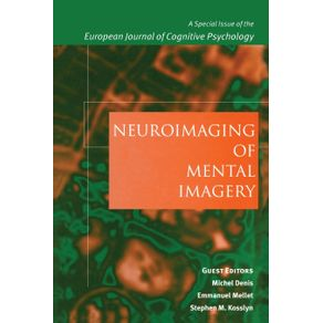 Neuroimaging-of-Mental-Imagery