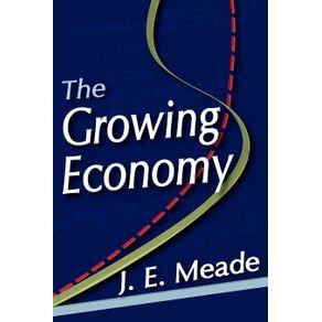 The-Growing-Economy