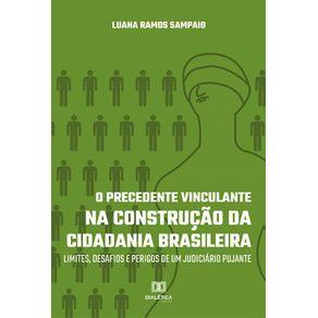 O-Precedente-Vinculante-na-Construcao-da-Cidadania-Brasileira--Limites-Desafios-E-Perigos-De-Um-Judiciario-Pujante