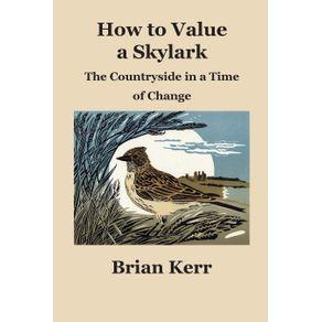 How-to-Value-a-Skylark