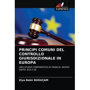 PRINCIPI-COMUNI-DEL-CONTROLLO-GIURISDIZIONALE-IN-EUROPA