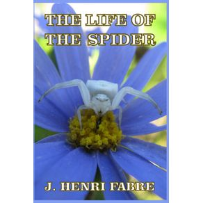The-Life-of-the-Spider
