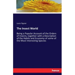 The-Insect-World