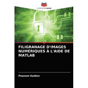 FILIGRANAGE-DIMAGES-NUMERIQUES-A-LAIDE-DE-MATLAB