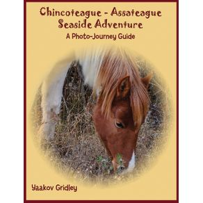 Chincoteague-Assateague-Seaside-Adventure