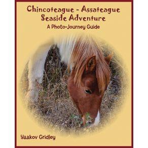 Chincoteague-Assateague-Seaside-Adventure
