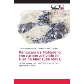 Remocion-de-Molibdeno-con-carbon-activado-de-tusa-de-Maiz--Zea-Mays-