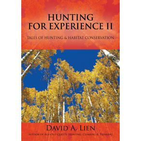 Hunting-for-Experience-II