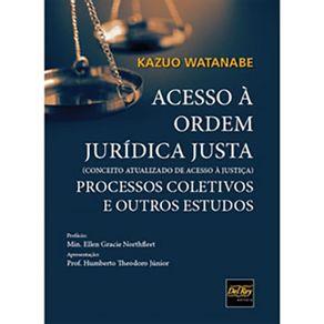 Acesso-a-Ordem-Juridica-Justa---Conceito-atualizado-de-Acesso-a-Justica--