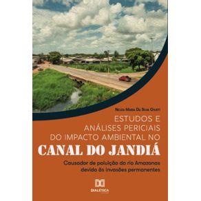 Estudos-e-analises-periciais-do-impacto-ambiental-no-Canal-do-Jandia--Causador-de-poluicao-do-rio-Amazonas-devido-as-invasoes-permanentes