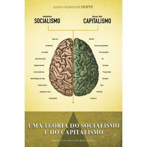 Uma-Teoria-do-Socialismo-e-do-Capitalismo