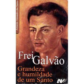 Frei-Galvao---Grandeza-E-Humildade-De-Um-Santo