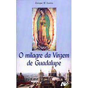 O-Milagre-Da-Virgem-De-Guadalupe