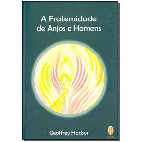 FRATERNIDADE-DE-ANJOS-E-HOMENS-A