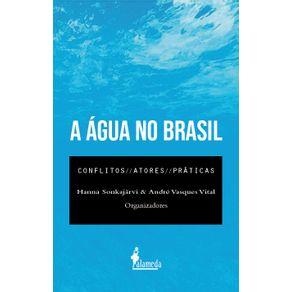 A-Agua-No-Brasil-conflitos-atores-e-praticas