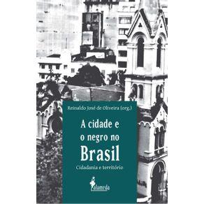 Cidade-E-O-Negro-No-Brasil-A-cidadania-e-territorio