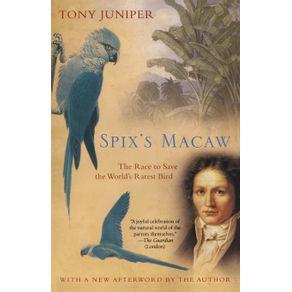 Spix-s-Macaw