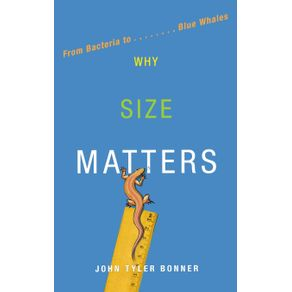 Why-Size-Matters