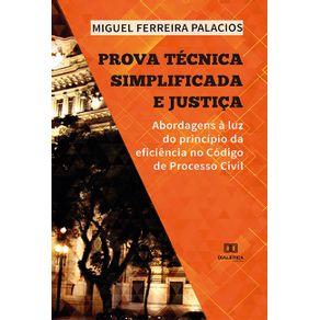 Prova-Tecnica-Simplificada-e-Justica--abordagens-a-luz-do-principio-da-eficiencia-no-Codigo-de-Processo-Civil