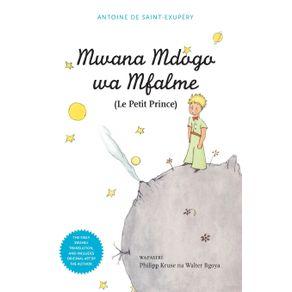 Mwana-Mdogo-Wa-Mfalme--Le-Petit-Prince-