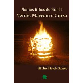 Somos-filhos-do-Brasil--Verde-Marrom-e-Cinza