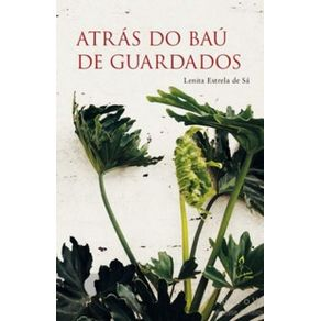 Atras-do-bau-de-guardados