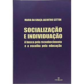Socializacao-E-Individuacao-A-Busca-Pelo-Reconhecimento-e-a-Escolha-Pela-Educacao