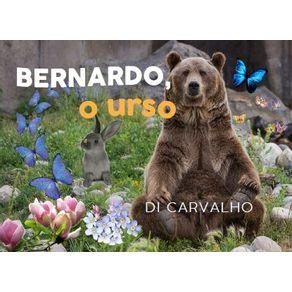 Bernardo-o-urso