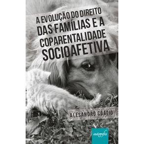 A-evolucao-do-direito-das-familias-e-a-coparentalidade-socioafetiva