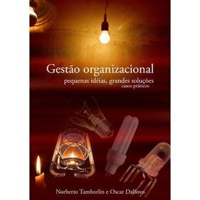 Gestao-Organizacional--Pequenas-Ideias-Grandes-Solucoes.-Casos-Praticos