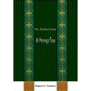 Padre-Pedro-Fossi---O-Peregrino