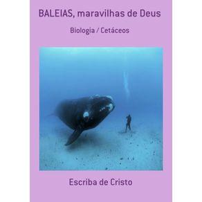 Baleias-Maravilhas-De-Deus--Biologia---Cetaceos