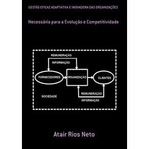Gestao-Eficaz-Adaptativa-E-Inovadora-Das-Organizacoes---Necessaria-Para-A-Evolucao-E-Competitividade
