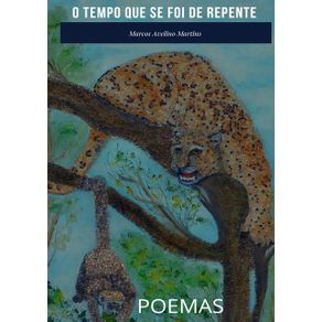 O-Tempo-Que-Se-Foi-De-Repente--Poemas-Para-Aprender-A-Gostar-De-Poesia