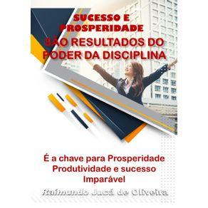 Sucesso-E-Prosperidade-Sao-Os-Resultados-Do-Poder-Da-Disciplina