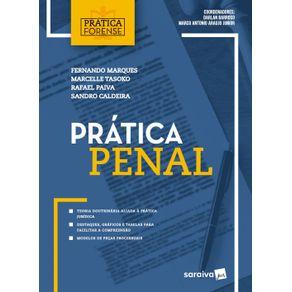 Pratica-penal-