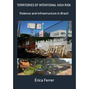 Territories-Of-Intentional-High-Risk--Violence-And-Infrastructure-In-Brazil