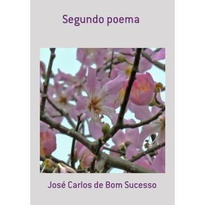 Segundo-Poema