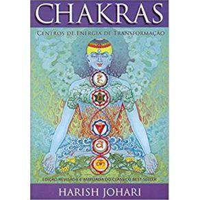 Chakras---Centro-de-Energia-de-Transformacao