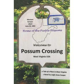 Possum-Crossing