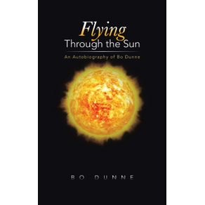Flying-Through-the-Sun