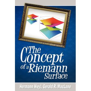 The-Concept-of-a-Riemann-Surface