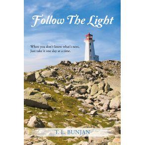 Follow-the-Light
