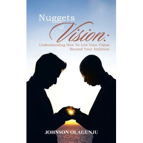 Nuggets-of-Vision
