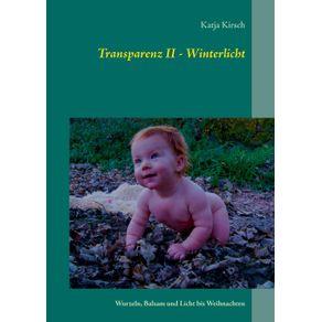 Transparenz-II---Winterlicht