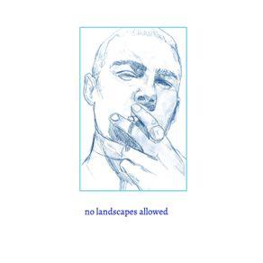 no-landscapes-allowed